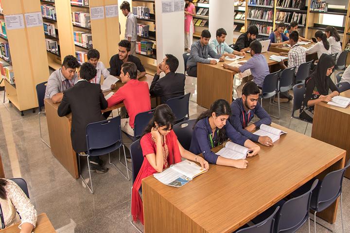 Rockland International School- library