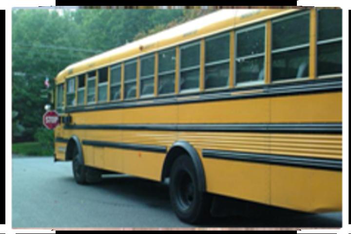 Rosy Public School- transport
