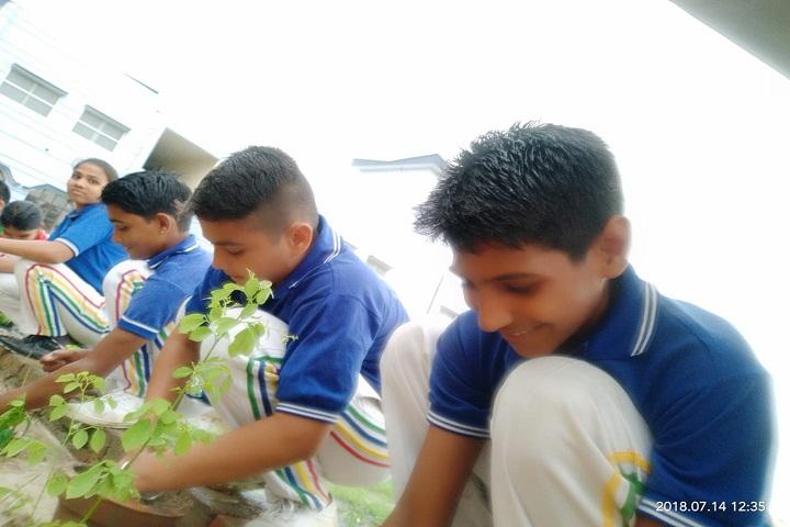 S V Public Junior High School-Planting