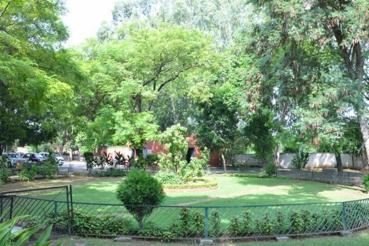 Government Girls Senior Secondary School-Garden Area