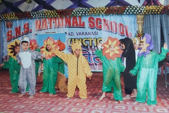 Satya Narayan Singh National School-Fancy Dress Competition