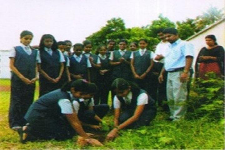 Seven Hills School-Plantation