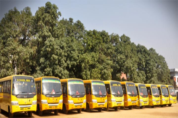 Spring Bell School-Transport