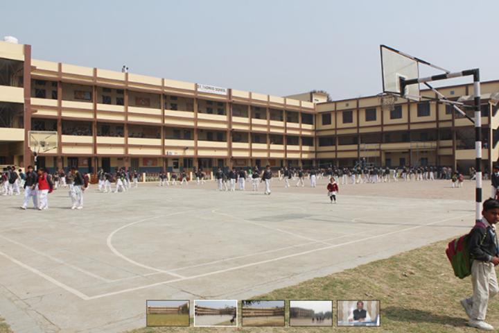 St Thomas School-Basketball Court