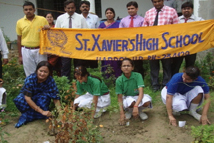 St Xaviers High School-Plantation