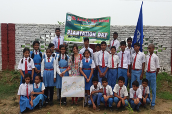 St Xaviers School-Tree Plantation