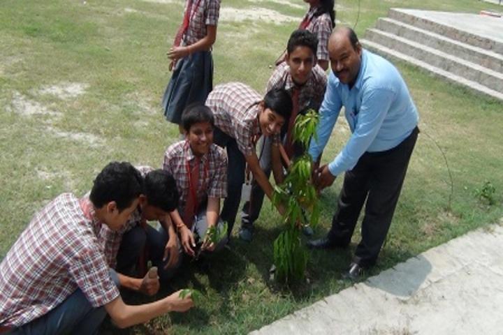 St Thomas International School-Tree Plantion