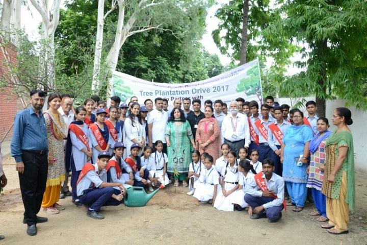 Government Model Senior Secondary School-Tree Plantation