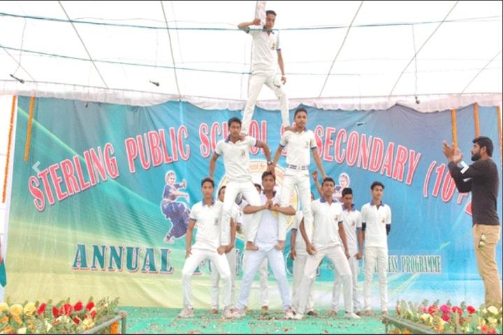 Sterling Public School-Activity