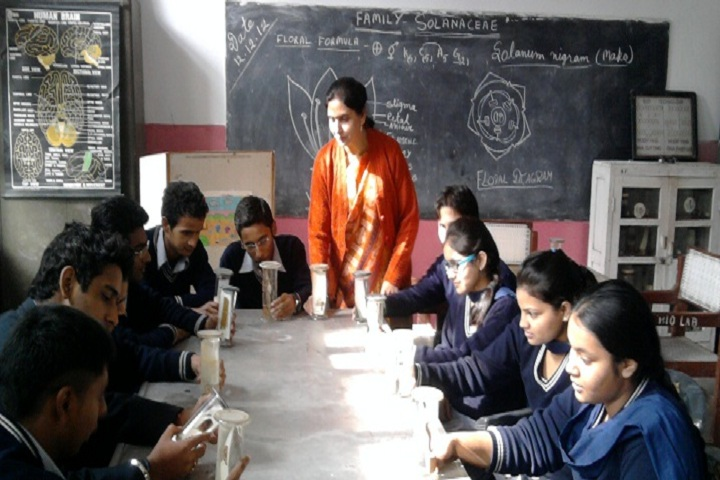 Government Model Senior Secondary School-Biology Lab