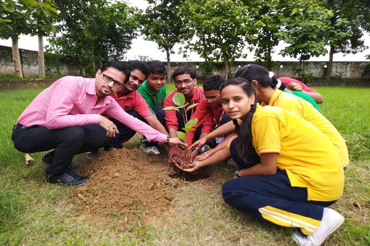 Sunbeam School-Tree Plantation