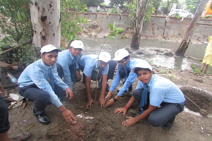 The Avenue Public School-Tree plantation