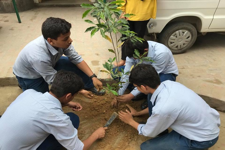 The Blossoms School-Tree plantation