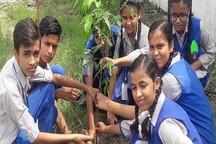 The Ganges World School-Tree plantation