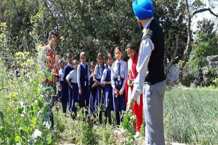 Government Model Senior Secondary School-Field Trip