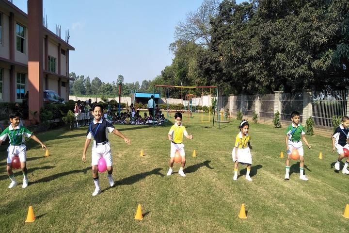 Translam Academy-Sports
