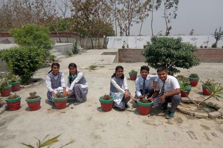 Vidyapeeth Public School-Tree Plantation
