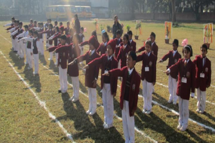 Bmdav Public School-Pledge