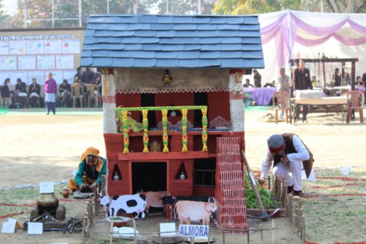 DAV Public School-School Exhibition