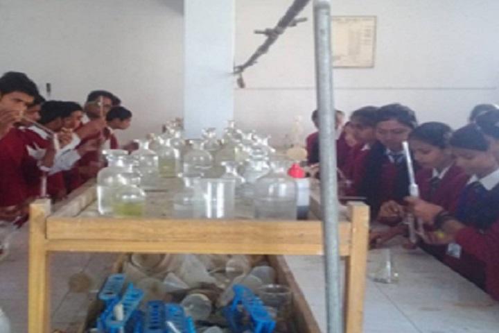 Doon Public School-Chemistry Lab