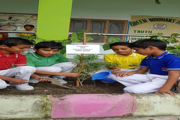 Green Wood Public School-Tree Plantation