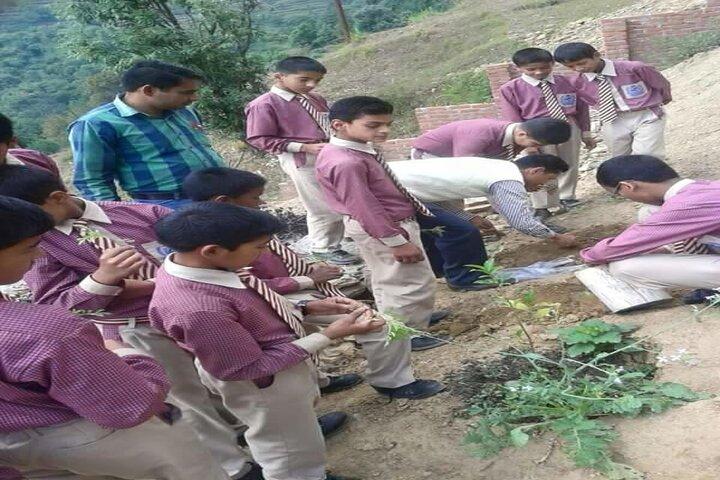Gurukulam Academy-Plantation