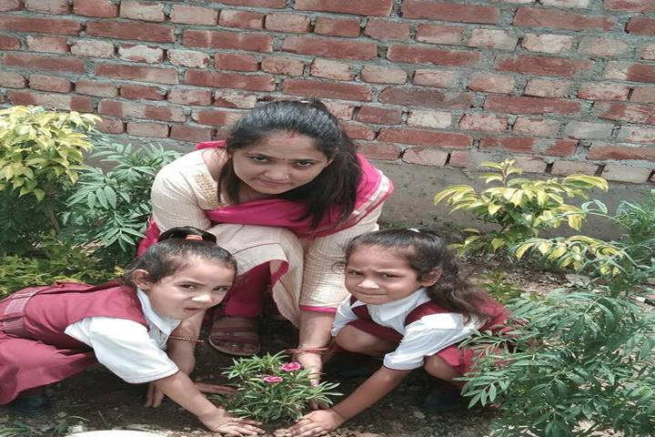 Happy Home Montessori School-Tree Plantation