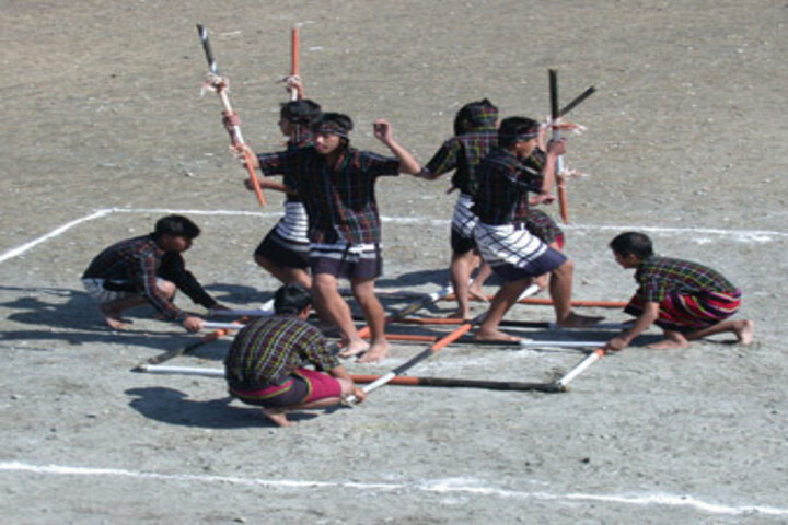 Information Technology Institute For The Tribes Of India-Dance