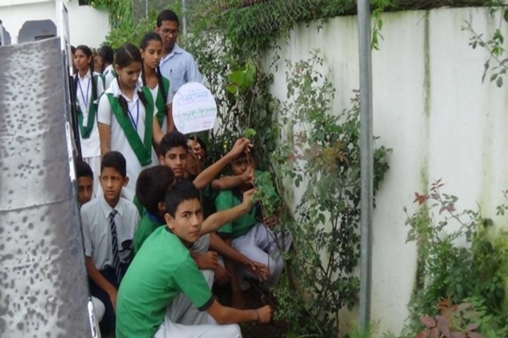 Janki Children Academy-Tree Plantation