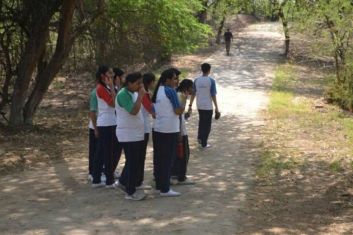Saupins School-Biodiversity Hunt