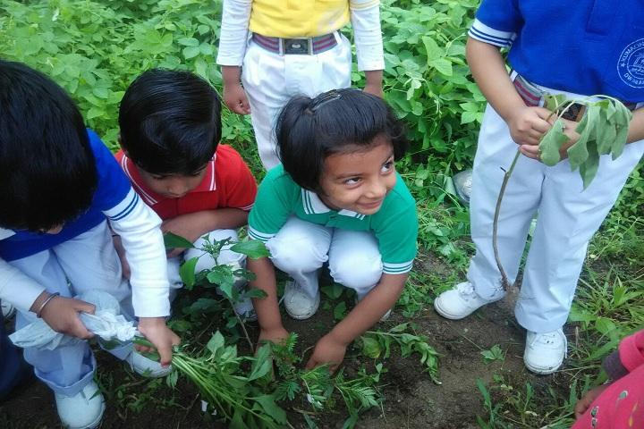 Kumaon Public School-Plantation