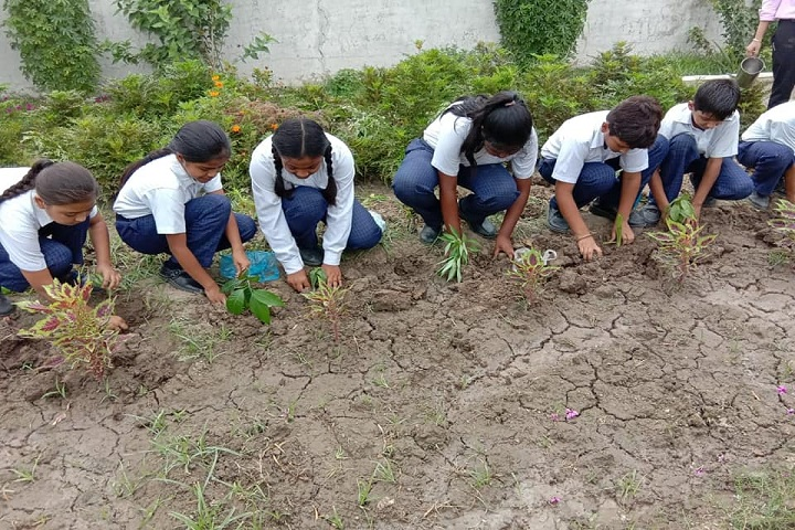 Mother India Global School-Tree Plantation