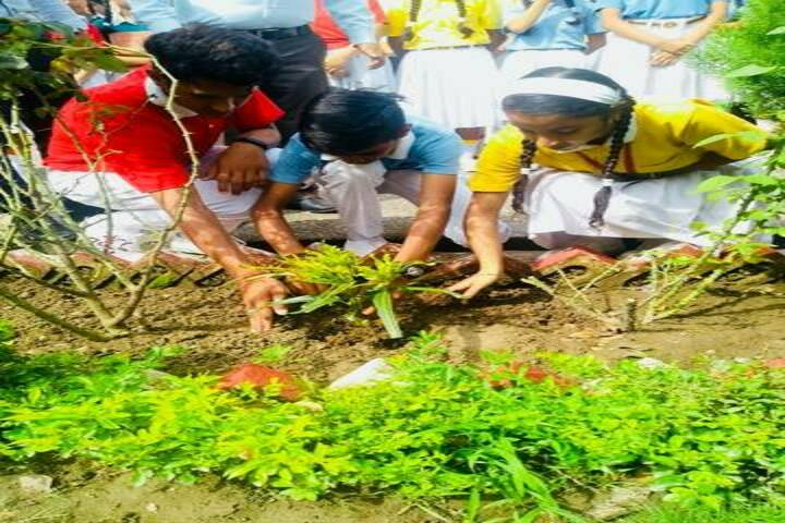 Nancy International School-Tree Plantation