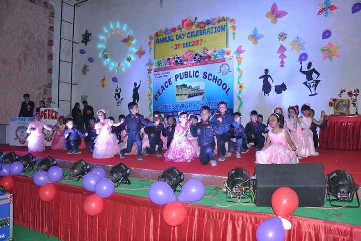 Peace Public School-Annual Function