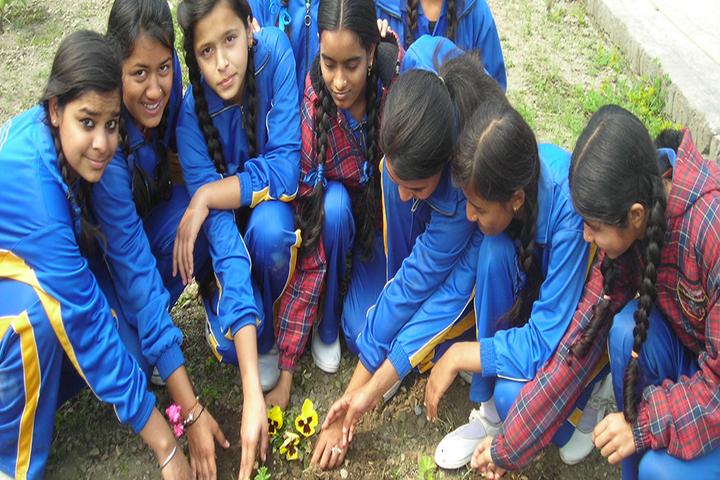 Persistent Students Nest Higher Secondary School-Plantation Activity