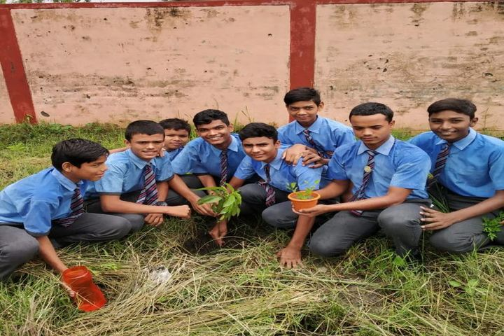 Police Modern School-Tree Plantation
