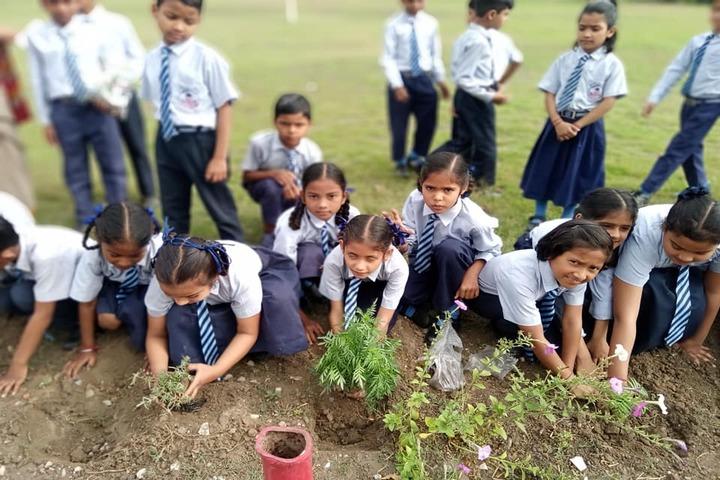 Rudra Public School-Plantation