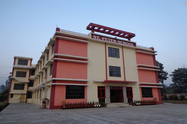 St Peters School-Campus