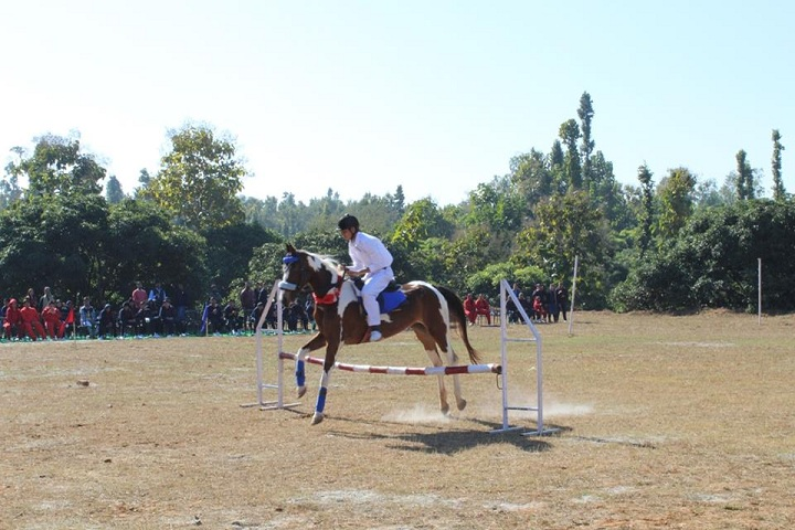 The Royal College-Horse Riding Activity