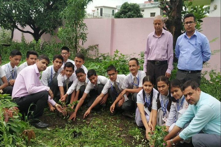 The Sunbeam Senior Secondary School-Tree Plantation