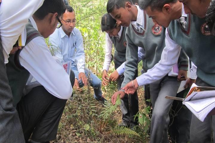Udayan International School-Tree Plantation