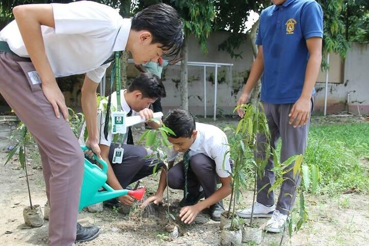 Delhi Public School-Plant A Tree