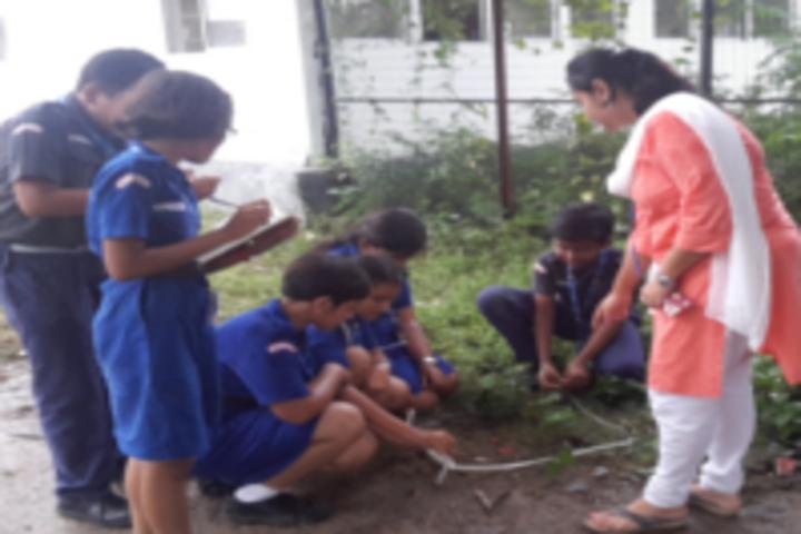 Future Campus School-Tree Plantation
