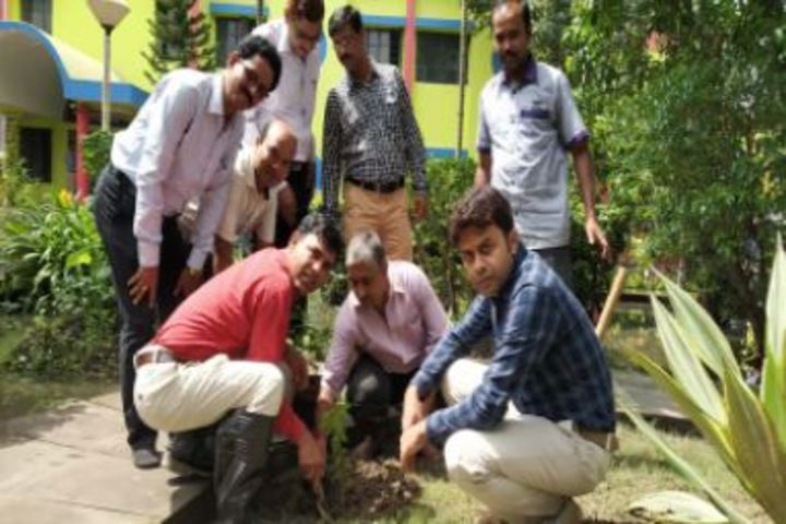 Kendriya Vidyalaya-Tree Plant