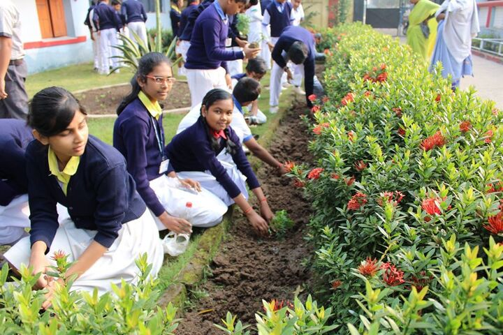 South Eastern Railway Mixed High School-Tress Plantation
