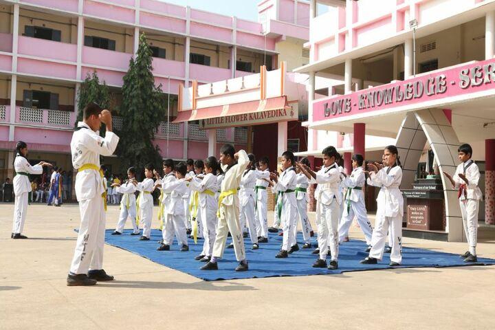 Little Flower English Medium School-Karate