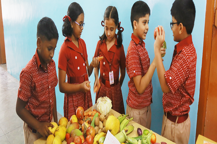 Timpany School-Fruits Day