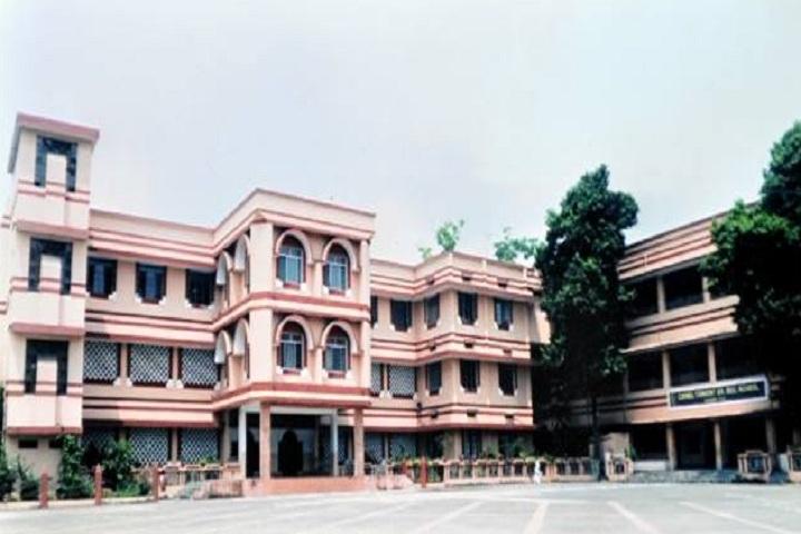Carmel Convent Senior Secondary School-Campus-View