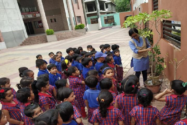 S B Sharma World School-Others plantation