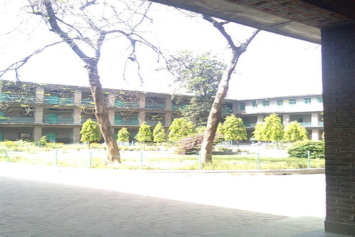 St Thomas Higher Secondary School-Campus View
